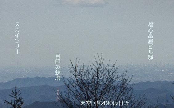 「東京スカイツリー」と「武蔵」